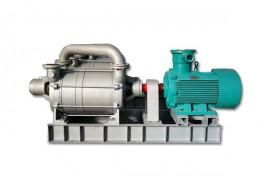 安徽2EKMZ系列两级水环真空泵