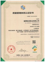 9000认证